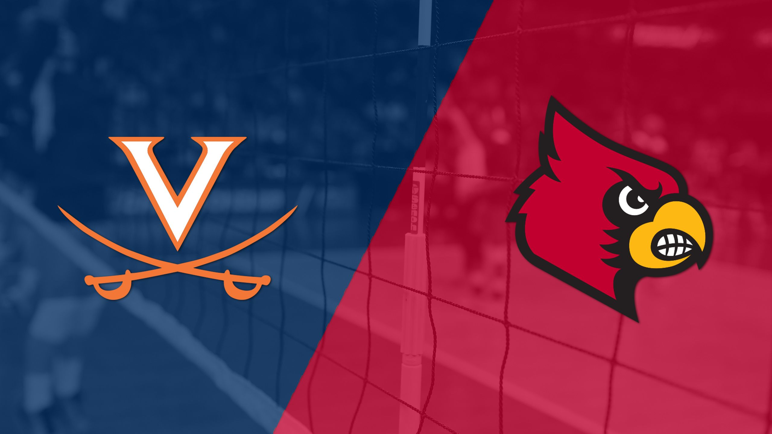 Virginia vs. Louisville (W Volleyball)