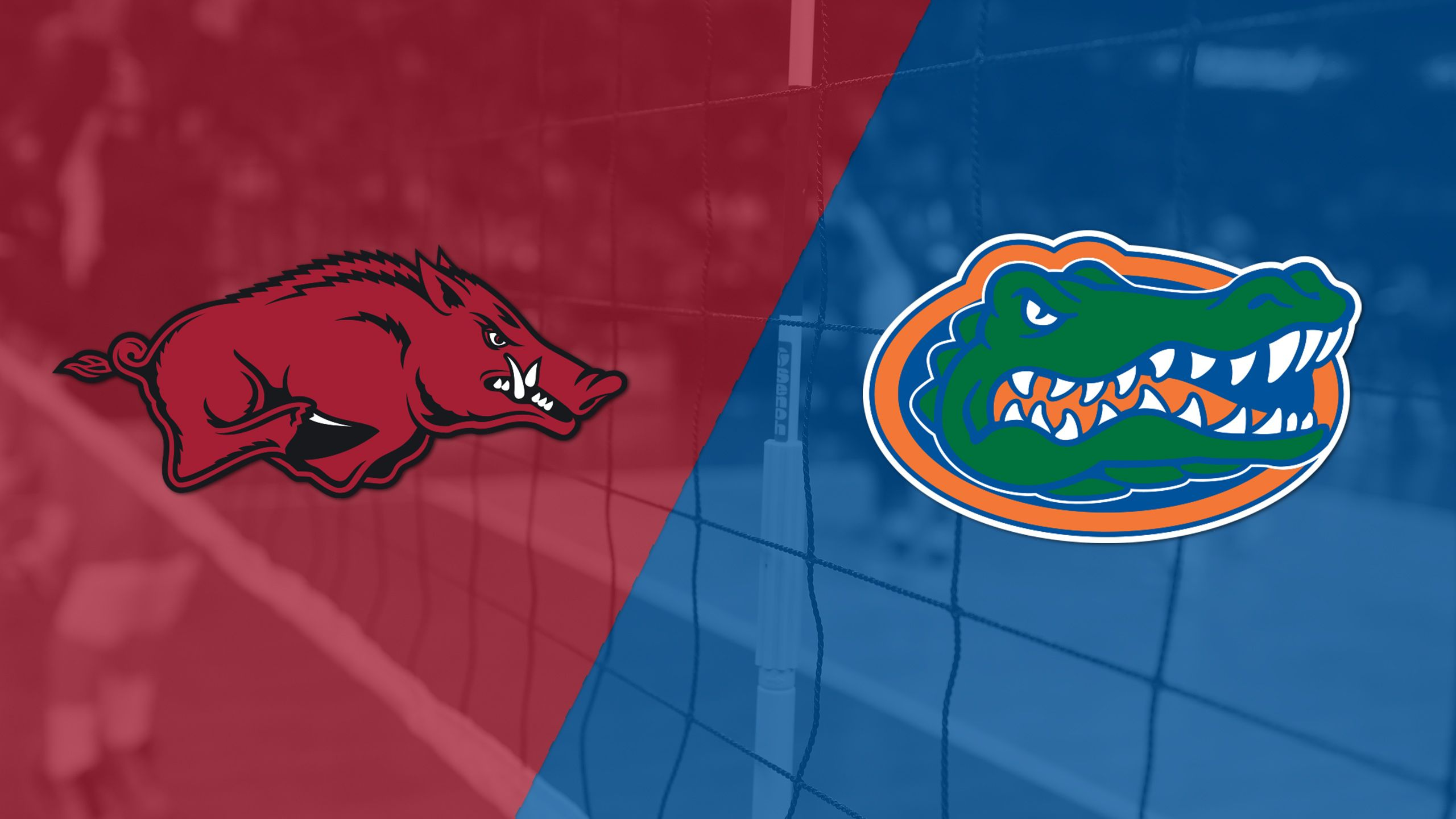 Arkansas vs. #4 Florida (W Volleyball)