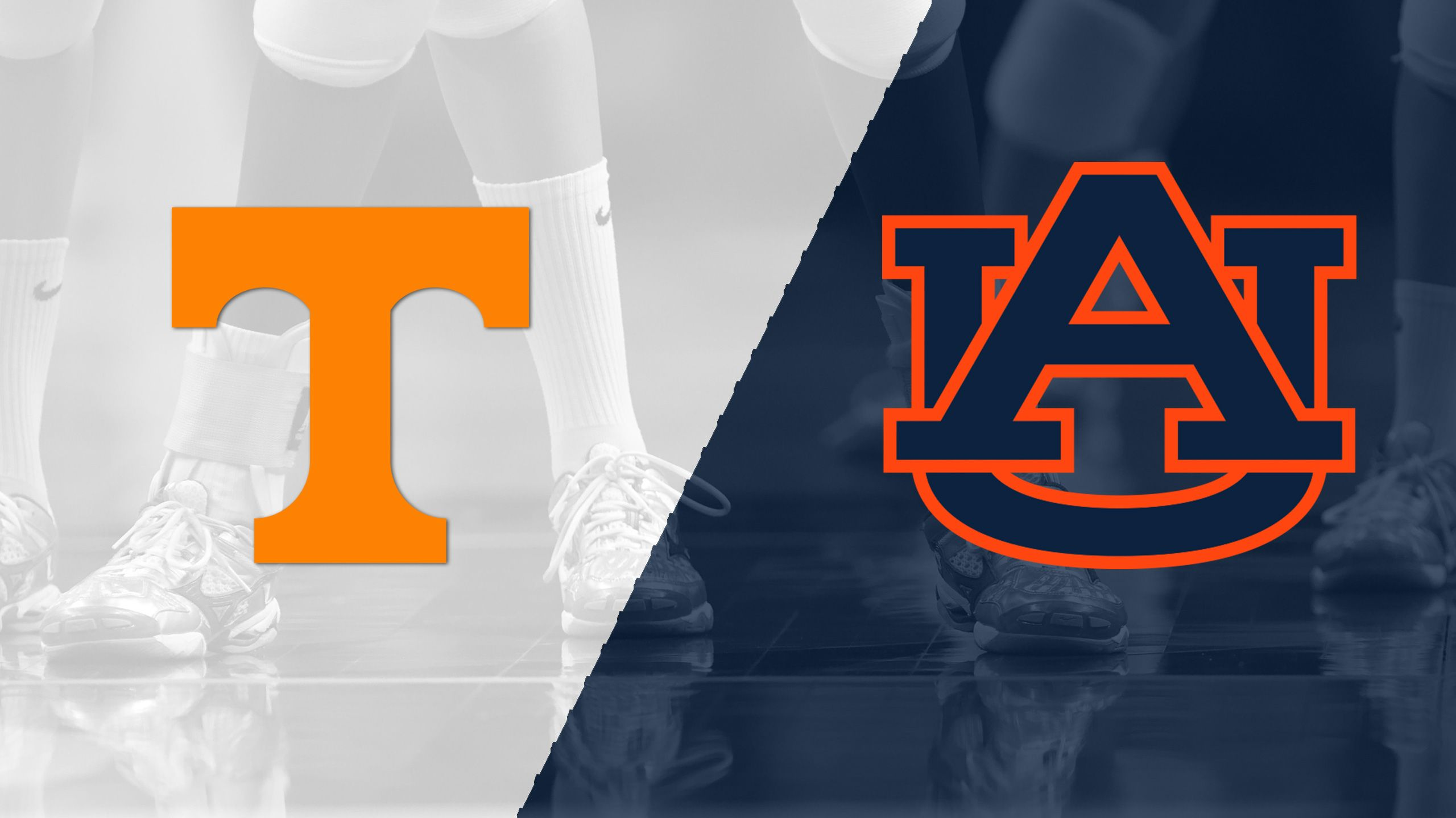 Tennessee vs. Auburn (W Volleyball)