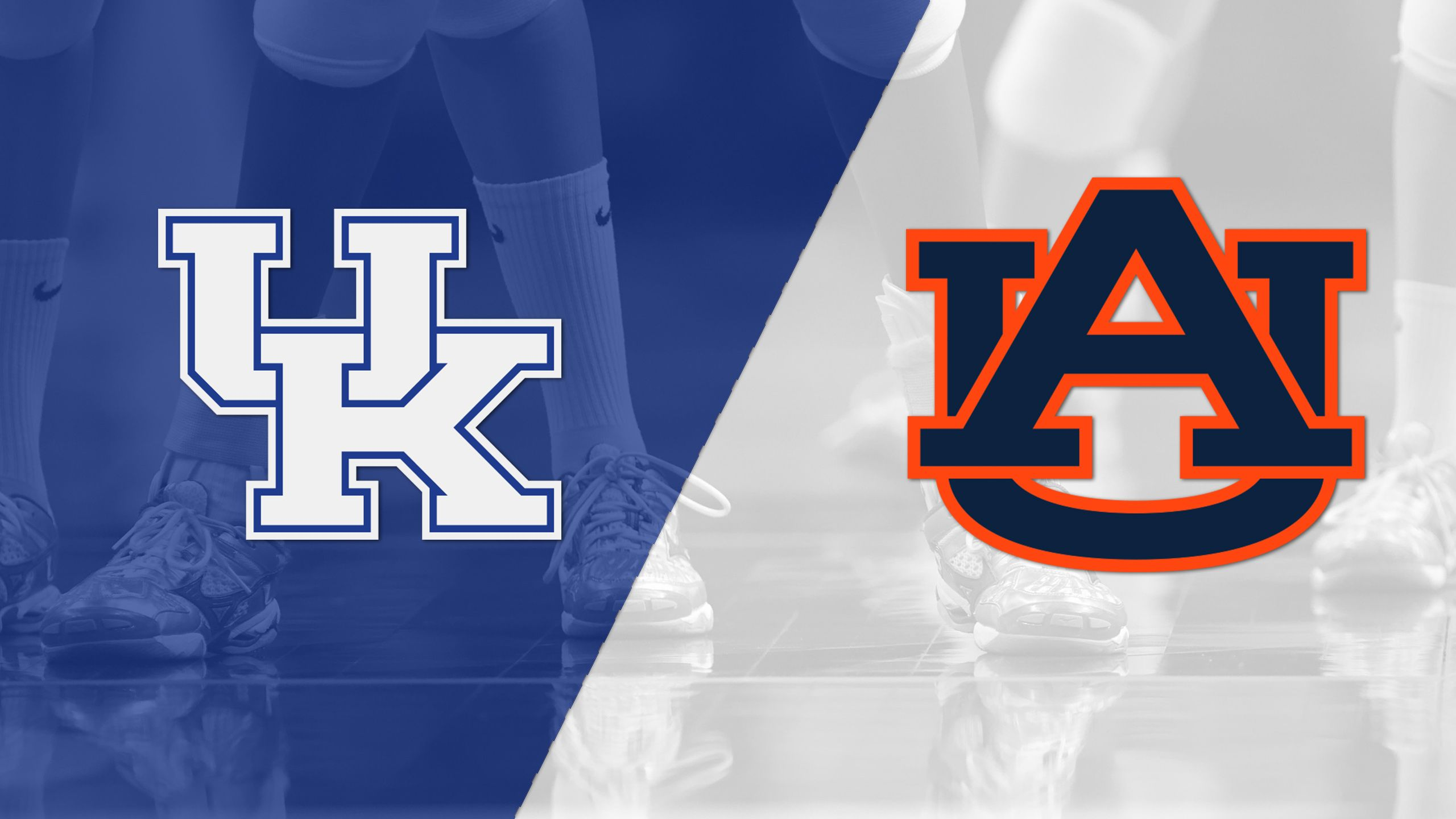 #7 Kentucky vs. Auburn (W Volleyball)