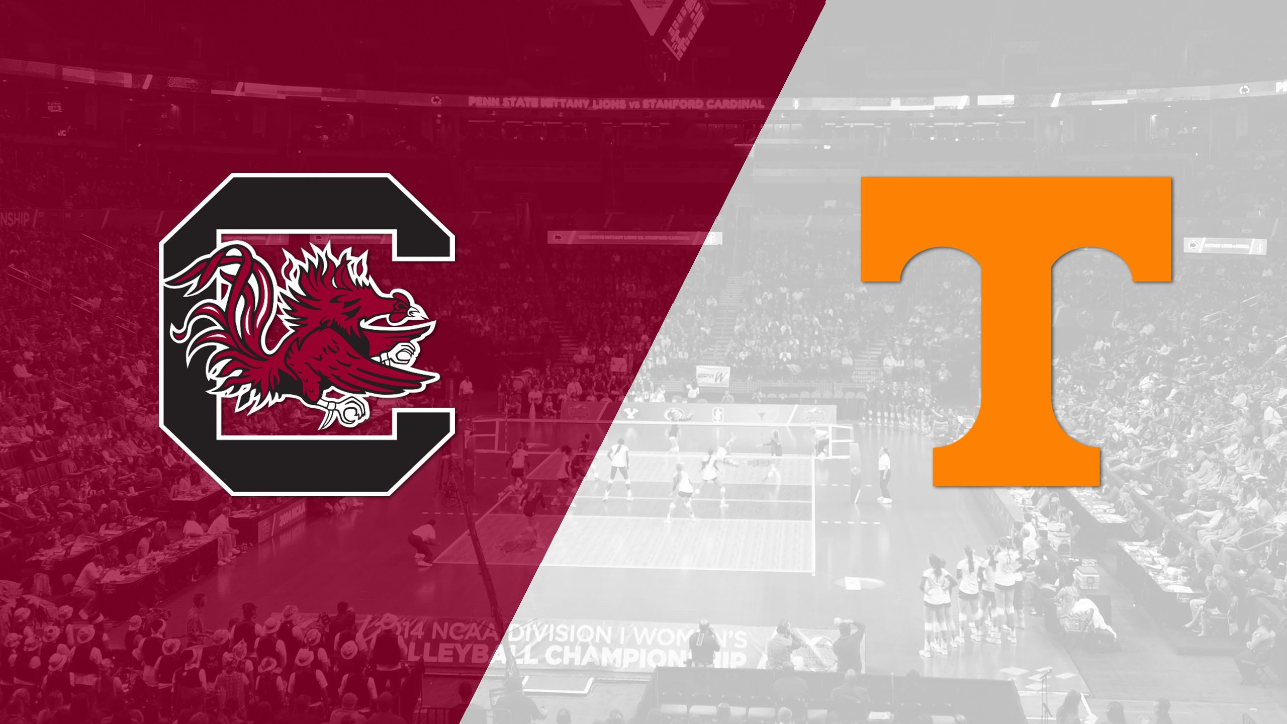 South Carolina vs. Tennessee (W Volleyball)