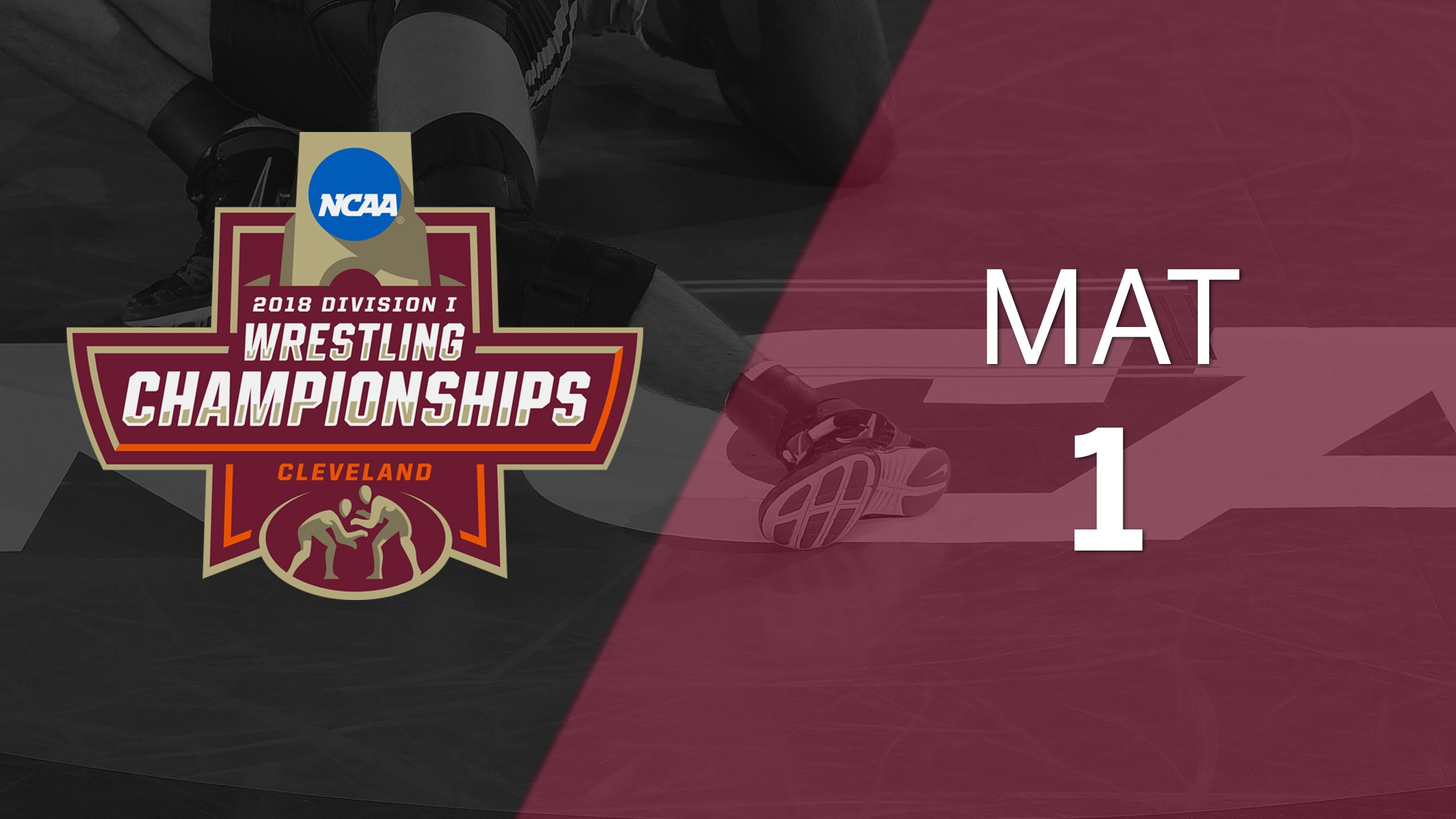 2018 NCAA Wrestling Championship (Mat 1, Medal Round)
