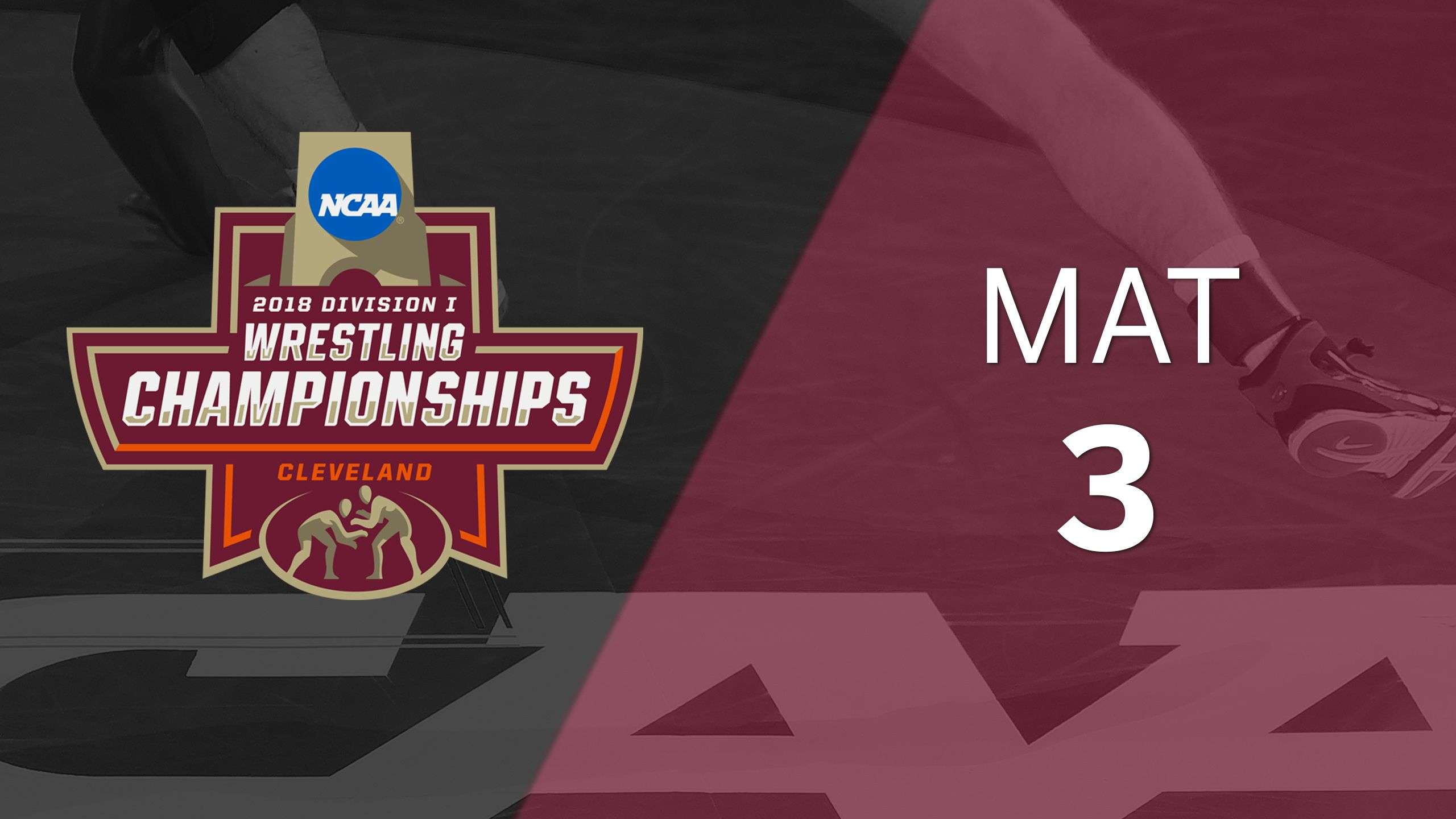 2018 NCAA Wrestling Championship (Mat 3, Medal Round)
