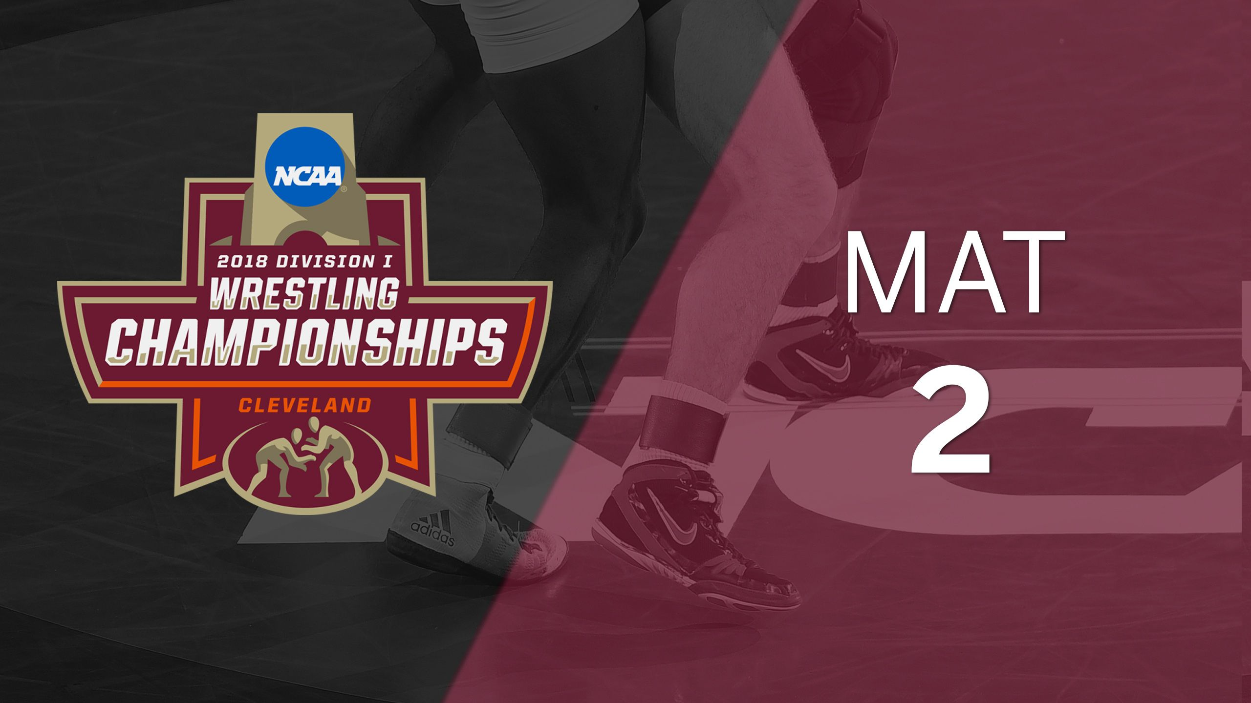 2018 NCAA Wrestling Championship (Mat 2, Medal Round)