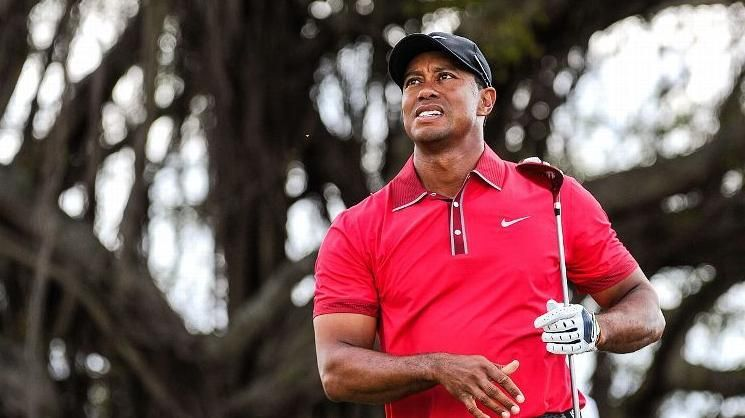 Major Questions For Tiger