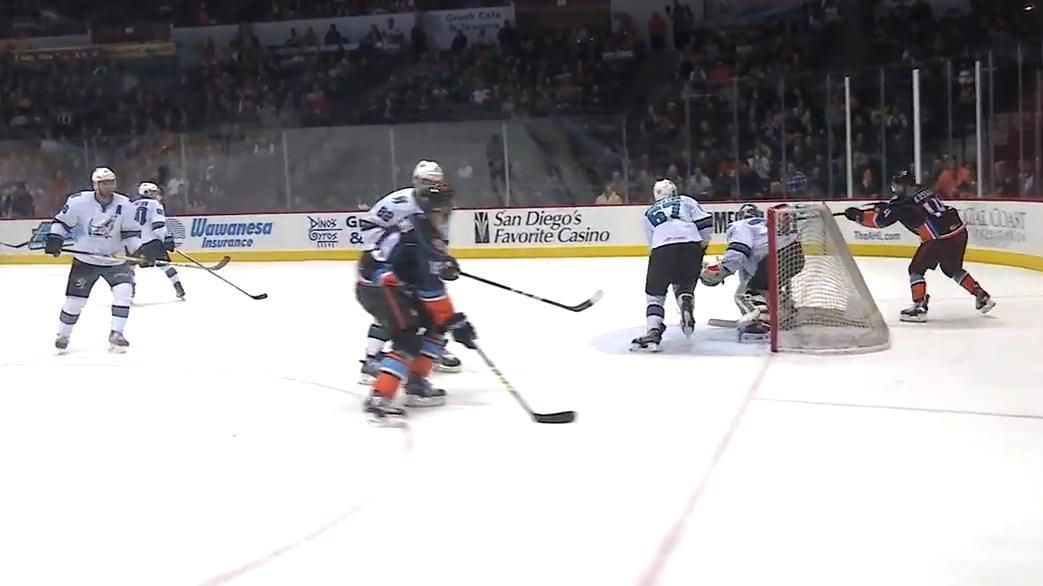 AHL player scores unbelievable lacrosse-style goal in win