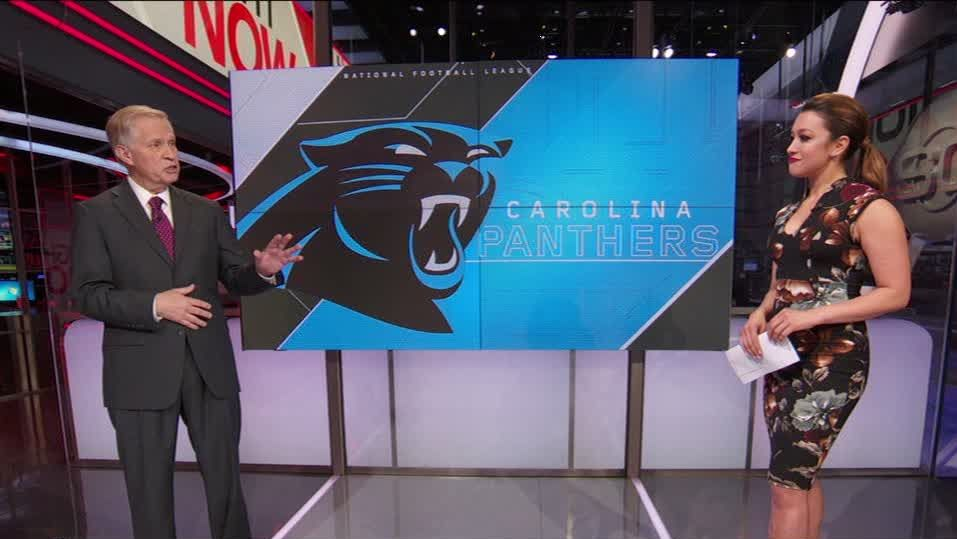 Major changes not expected with new Panthers owner
